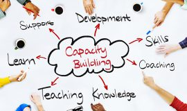 Institutional Development and Capacity Building